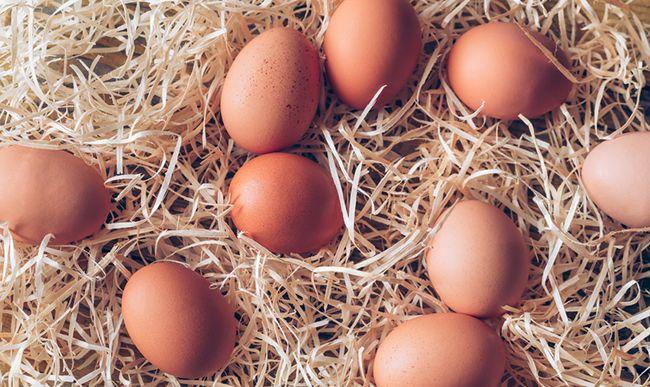 Vajíčka a vysoký cholesterol aneb, jak to ve skutečnosti je?